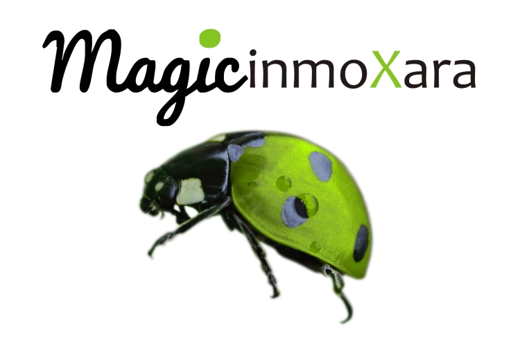 banner magic inmoxara